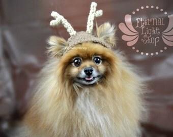 Pet Reindeer Hat (XS-XL)