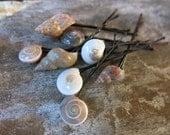 Sea shell hair pins - set of 8