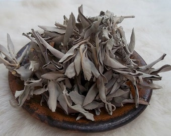CALIFORNIA WHITE SAGE (Salvia Apiana) 1 Ounces/Ceremony-Rituals-Blessings