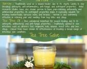 Organic Yarrow Salve, Tea Tree Salve, herbal salve for bleeding, hemorrhoids, varicose vein cream, ringworm, natural anti fungal salve