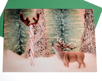Witty Deer and Candy Cane Christmas Card: Funny Holiday Card