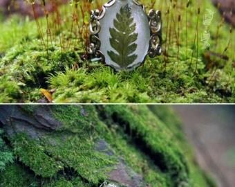 Fern Specimen Ring