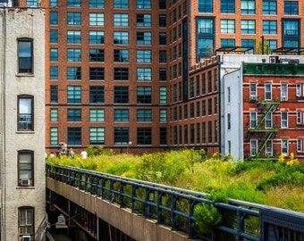 View of the High Line in Manhattan, New York - Urban Photography Fine Art Print or Wrapped Canvas