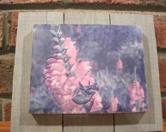 "Encaustic Photography ""A Bumblebee"""