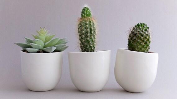 Flower Pot Planter Set Desk Plant Pot Indoor Planter Succulent