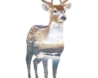 Faunascapes Deer Art Print by WhatWeDo