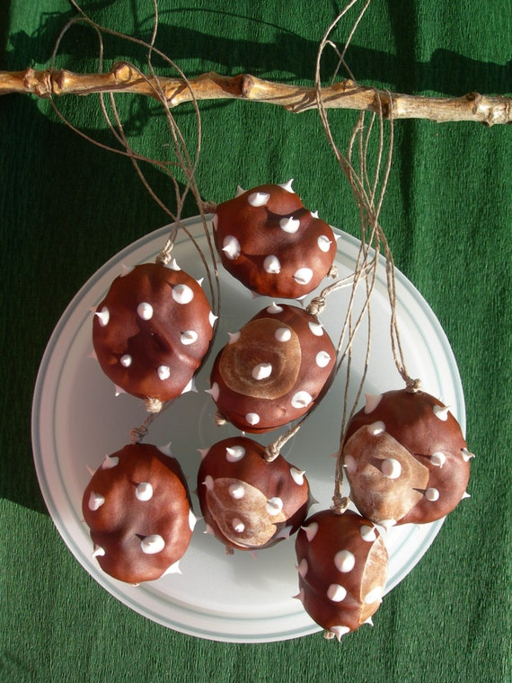 Chestnut ornaments snowy spikes set of with