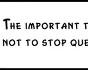 Wall Quote - ALBERT EINSTEIN - The important thing is not to Stop Questioning.
