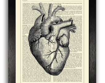 8 x 10 ART PRINT Black Heart illustration, Anatomical Heart Drawing Poster, Anniversary Gift, Gothic Poster Print, Home Office Wall Art Gift