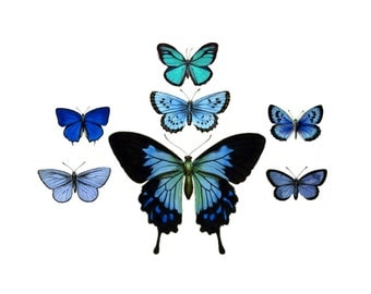 "Vintage Butterfly Temporary Tattoos - ""Fly & Flitter"""