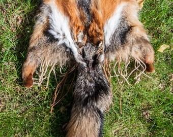 Large Grey Fox Purse