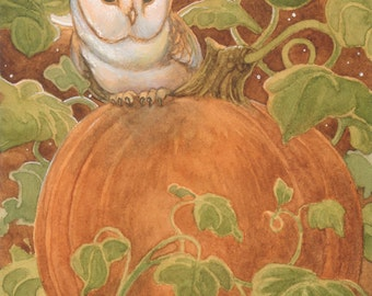 Harvest Moon Barn Owl 8.5x11 signed Print