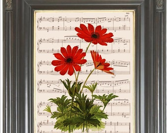 Red flower printed on dictionary or music page Dictionary art print Wall art decor Sheet music Digital art print Garden decor Item No 859