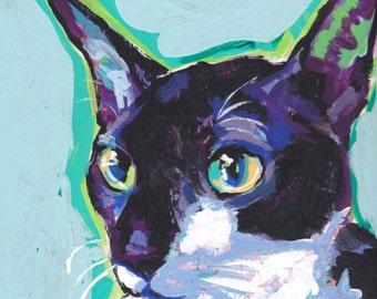 Cornish Rex Cat art print of pop art painting bright colorful cat portrait art 12x12