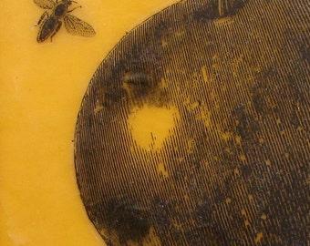 Apple and Bee Original Encaustic Painting