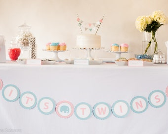 IT'S TWINS Baby Shower Banner, Twins Baby Shower Decoration, Boy and Girl Baby Shower