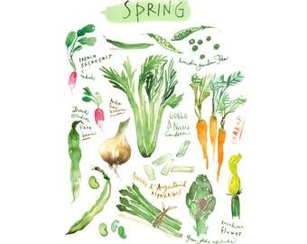 Large vegetable poster, Spring vegetable watercolor painting, Kitchen art print, Green kitchen decor, Seasonal poster, Veggies, Food art