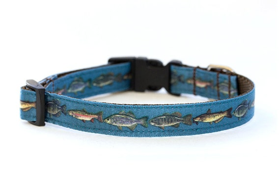 Fishy dog collar 5 8 inch width adjustable by monicaannpets for Fish dog collar