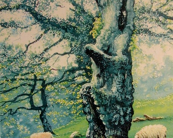 Ancient Oak  -  A signed and numbered print published from an original watercolour by Andrew. Sheep, Oak trees, Woodland.