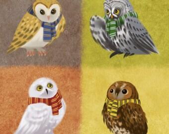 Hogwarts Owls Print