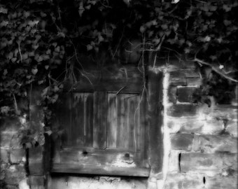atmospheric, mysterious, black and white photo, door, ivy