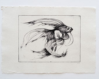 fish - original handpulled etching - black and white - illustration
