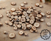 100 Small Wood Slices~ 1 to 1.25 inch~ Tree Slice Assortment ~ Summer Wedding
