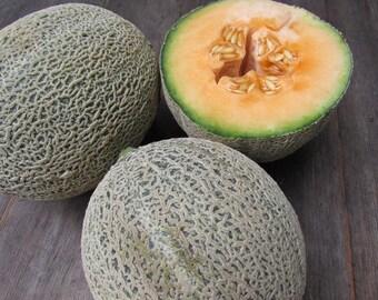 Iroquois Melon - 30 seeds (Organic/non-GMO)