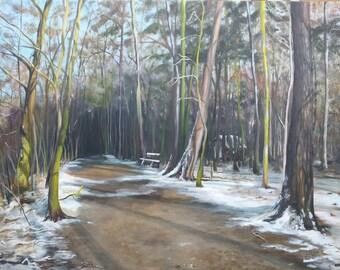 Woods in Snow by Yaniv Brokman