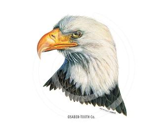 Eagle Decal Sticker