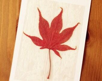 Handmade Maple Leaf Postcards
