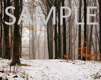 Set of 12 Sweden snow photograph stationery note card (with envelope)