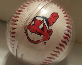 American League Cleveland Indian Baseball