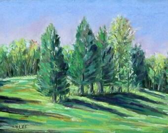Summer Shadows, 9 x 6, pastel painting, original art, trees, woodlands