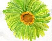 Lime Green Gerber Daisy Watercolors Paintings Original,  Green Gerber Daisy watercolor painting, Daisy artwork, Gerber decor