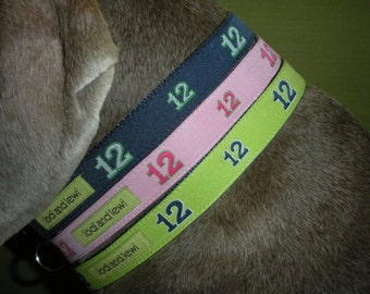 12th Dog Collar for small dogs