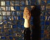 Morel Mushroom Bottle Stopper