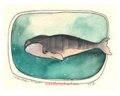 Whale Art Print, Sea Life Art Print, Marine Life Artwork, Ocean, Whale, 8x10 Whale Print - Right Whale