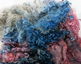Cotswold Wool Locks - Hand Dyed - Spinning, Felting - Pink, Blue, Gray