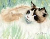 Ragdoll Cat Art  Print of my Watercolor Painting Portrait Gift Christmas unique