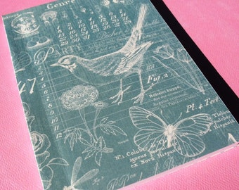 Robin's Egg - Softcover Notebook Journal