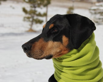 Polarfleece Snood for Large Dog - Chartreuse - Dobersnood - Dog Snood - Snood
