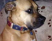 Stars and Stripes Martingale Collar