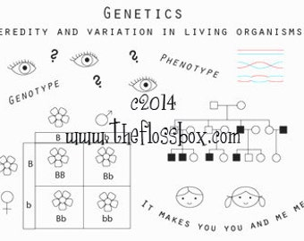 Genetics Embrodiery Pattern