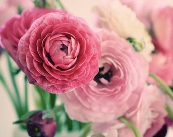 Flower Photography, Pink Ranunculus, Fine Art Print, Shabby, Home Decor, Spring, Romantic, Nature Photo, Elegant, Wall Art, Bouquet