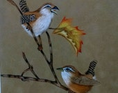 Fall Wrens & Leaves on Suede Colored Pencil