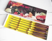 Vintage Fondue Fork Set 6- Stainless Steel and Teak - Norleans - In Box