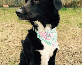 Lilly Pulitzer inspired Slide-on Dog Bandana- Oh La La, Peel and Eat, Crazy Cat House or So A Peeling