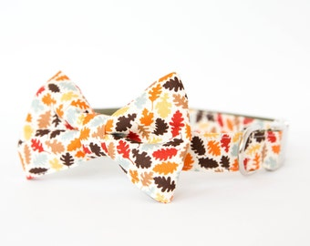 Bowtie Dog Collar - Autumn Leaves