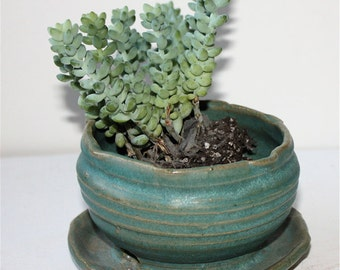 Stoneware Succulent Planter In Stoney Turquoise Glaze Three Inches Tall by Four Wide at Bottom